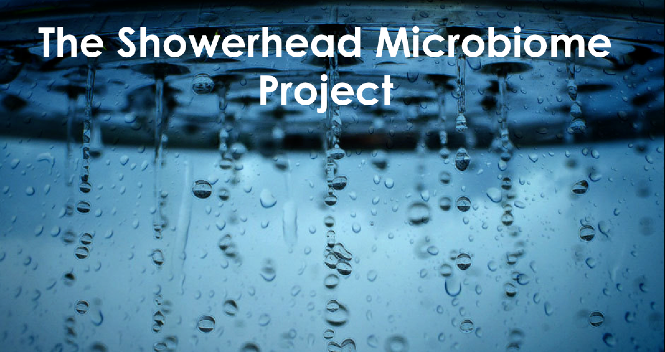 The Showerhead Microbiome Project