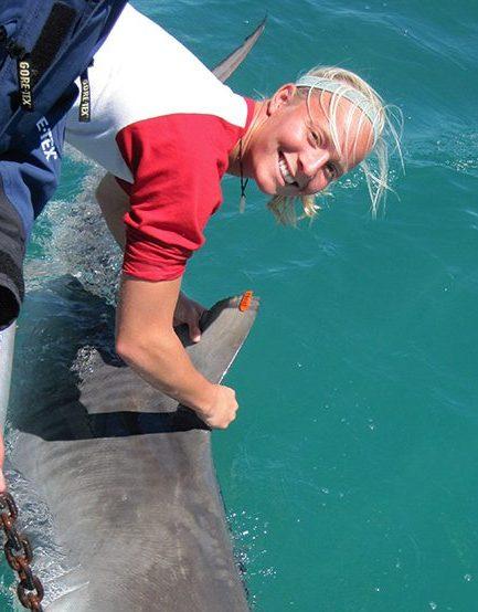 Enie Hensel shark bait