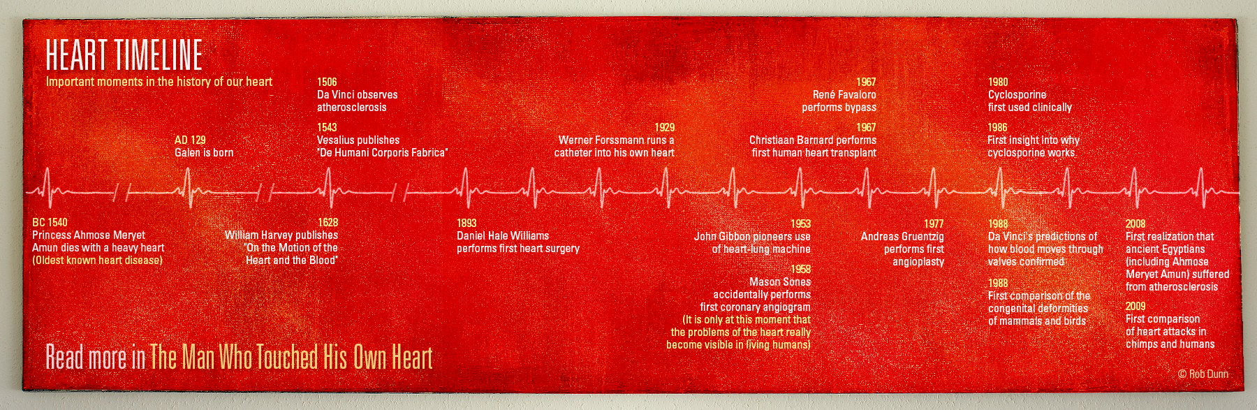 Heart Timeline